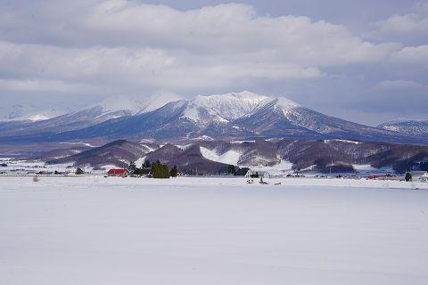 20170319 北海道の旅  51.jpg