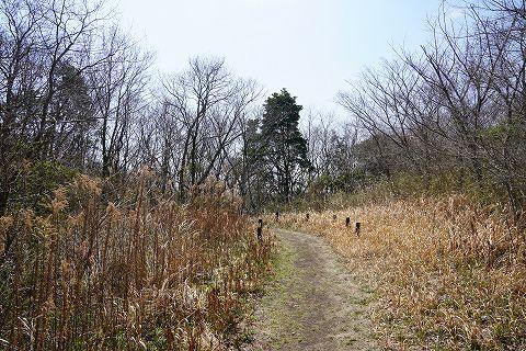 20170404 茨城方面の旅 18.jpg