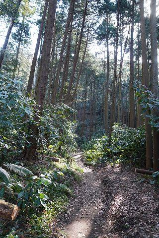 20180210 鎌倉散策 07.jpg