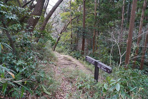20180210 鎌倉散策 30.jpg