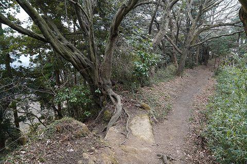 20180210 鎌倉散策 31.jpg