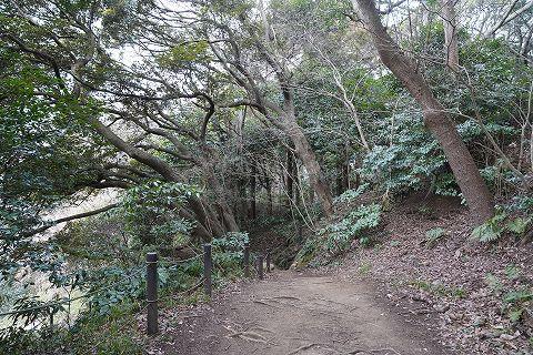 20180210 鎌倉散策 38.jpg