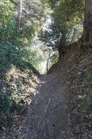 20180212 鎌倉散策 15.jpg