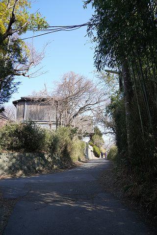 20180212 鎌倉散策 23.jpg
