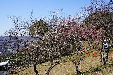 20180217 金沢文庫散策 12.jpg