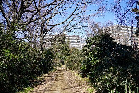 20180217 金沢文庫散策 17.jpg