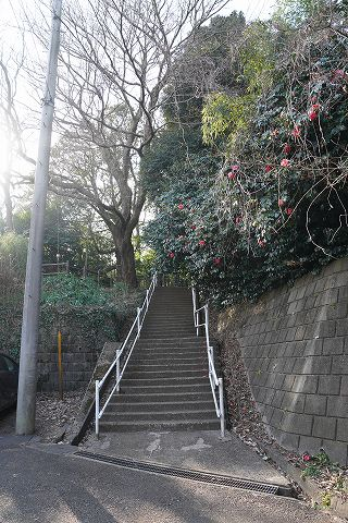 20180217 金沢文庫散策 65.jpg
