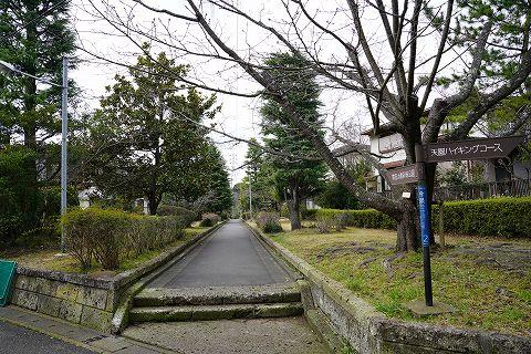 20180310 鎌倉散策 34.jpg