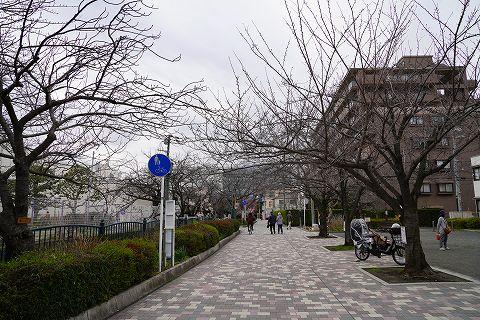 20180310 鎌倉散策 66.jpg