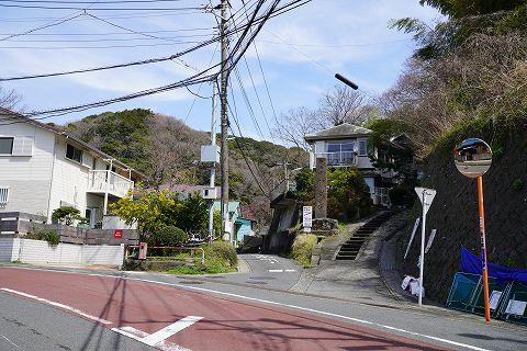 20180324 逗子散策 05.jpg