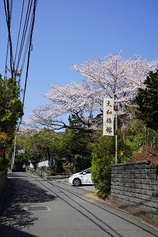 20180331 鶴巻温泉散策 05.jpg