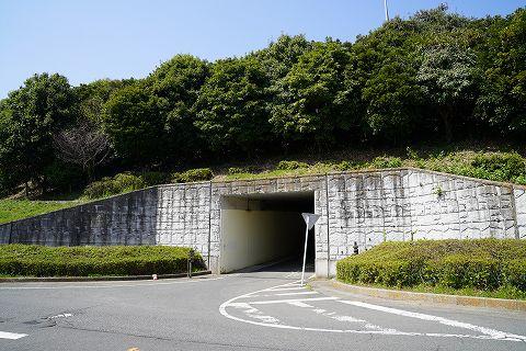 20180331 鶴巻温泉散策 10.jpg