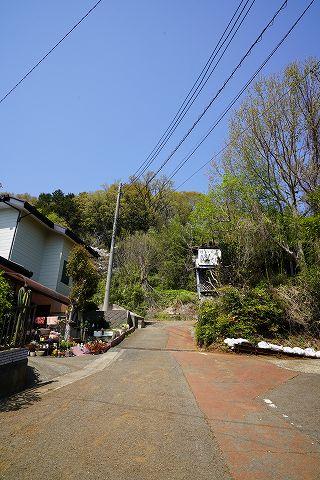 20180331 鶴巻温泉散策 11.jpg