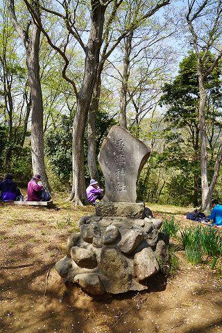20180331 鶴巻温泉散策 18.jpg