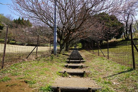 20180331 鶴巻温泉散策 34.jpg