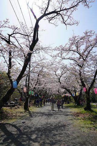 20180331 鶴巻温泉散策 41.jpg