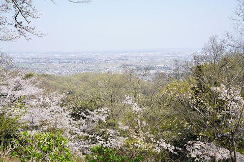 20180331 鶴巻温泉散策 45.jpg