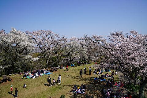 20180331 鶴巻温泉散策 50.jpg