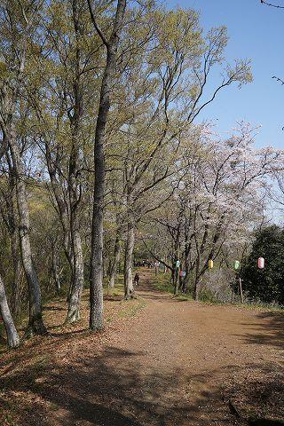 20180331 鶴巻温泉散策 58.jpg