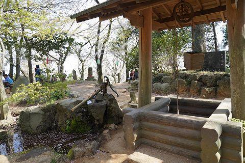 20180331 鶴巻温泉散策 68.jpg