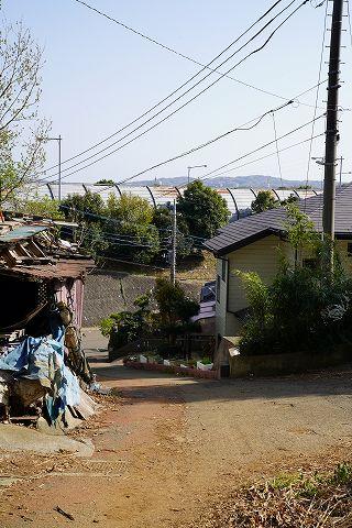 20180331 鶴巻温泉散策 79.jpg