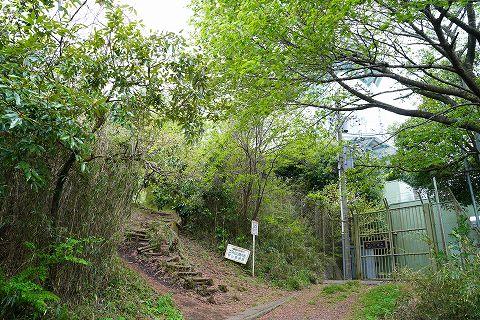 20180407 逗子散策 25.jpg