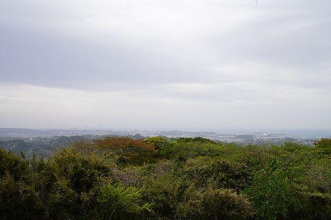 20180407 逗子散策 29.jpg