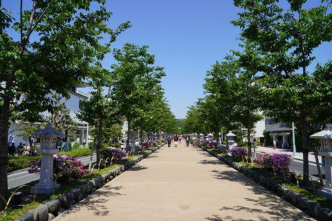 20180428 鎌倉散策 03.jpg