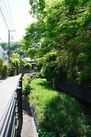 20180428 鎌倉散策 06.jpg