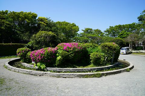 20180428 鎌倉散策 37.jpg