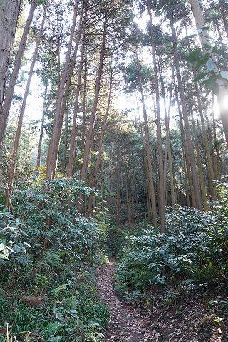 20181208  鎌倉散策 06.jpg