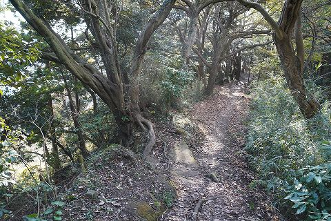 20181208  鎌倉散策 17.jpg