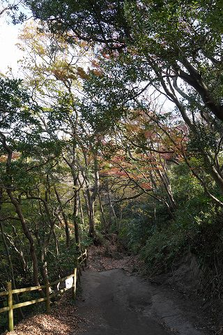 20181215 鎌倉散策 18.jpg