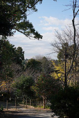20181215 鎌倉散策 25.jpg