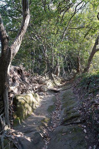 20181221 鎌倉散策 10.jpg