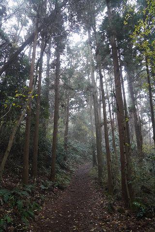 20181223 鎌倉散策 24.jpg