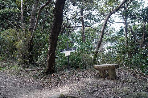 20190126 京急長沢散策 08.jpg