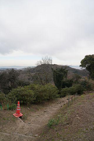 20190126 京急長沢散策 40.jpg