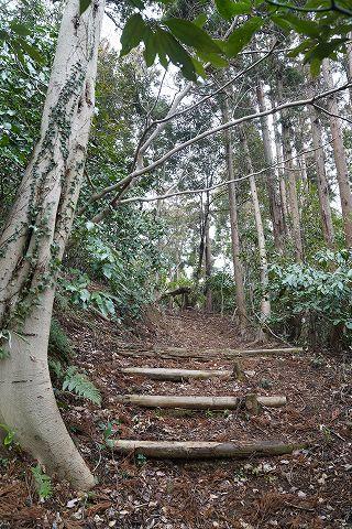 20190209 鎌倉散策 15.jpg