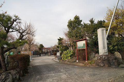 20190216 国府津散策 114.jpg