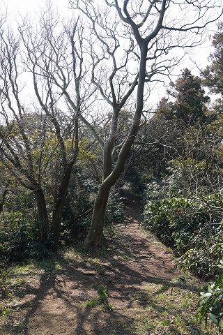 20190302 田浦散策 54.jpg
