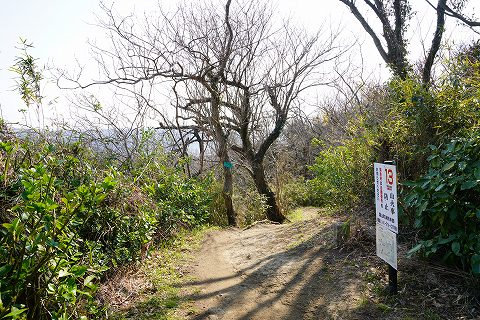 20190302 田浦散策 58.jpg