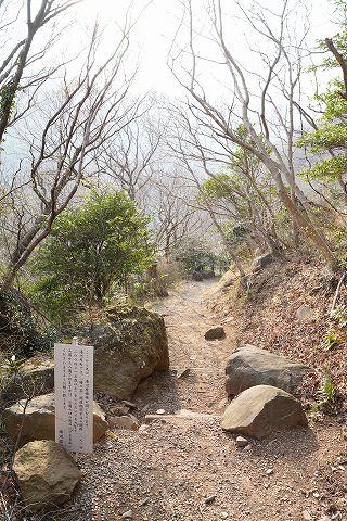 20190316 湯河原散策 73.jpg