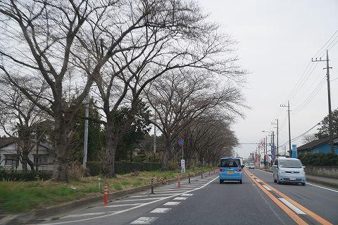 20190322 茨城方面の旅 02.jpg