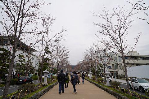 20190330 鎌倉散策 02.jpg