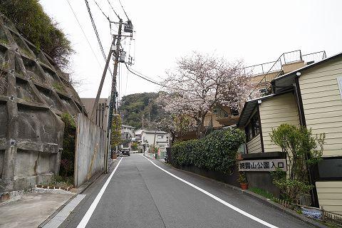 20190330 鎌倉散策 30.jpg
