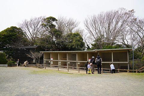 20190330 鎌倉散策 32.jpg