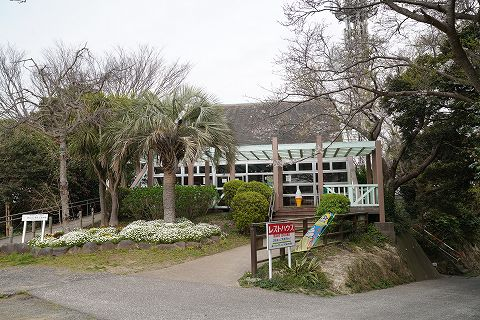 20190330 鎌倉散策 34.jpg