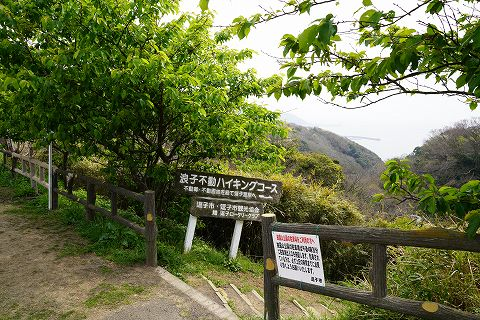 20190330 鎌倉散策 41.jpg