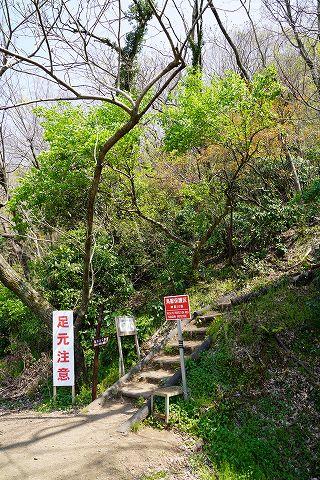 20190406 秦野散策 13.jpg
